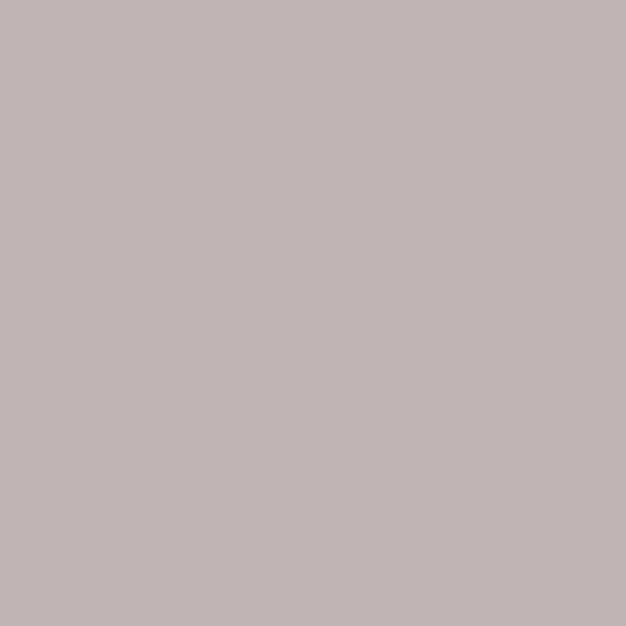 splendorcaratula
